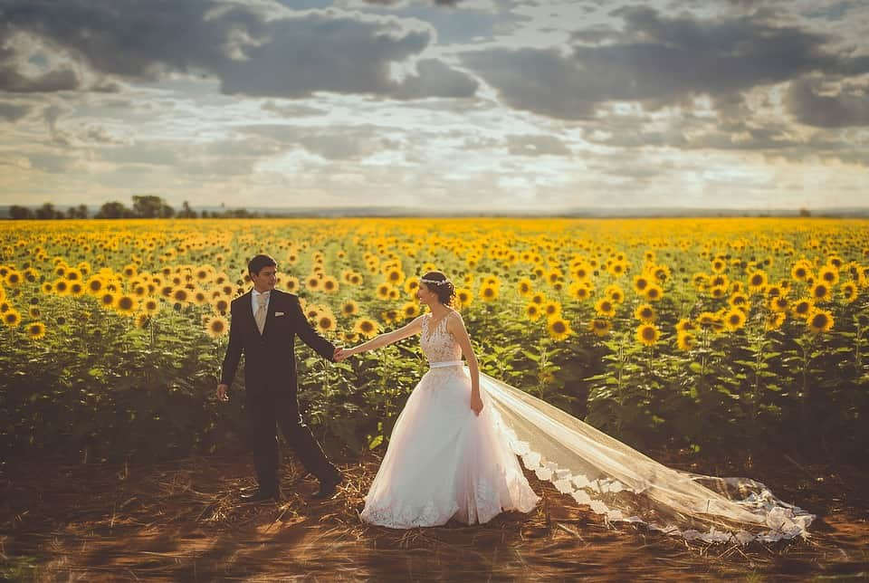 bride and groom sunflower field pictorial